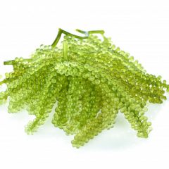 sea-grapes-green-caviar-seaweed-isolated-white-backgroun_62678-397